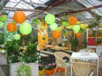 balkonblumen_terrasse_fuerth_nuernberg_erlangen